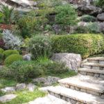 Joan Zande's Garden