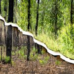 Before and 12 months after bushfire at Kurri Kurri, Hunter Valley, image H Miles