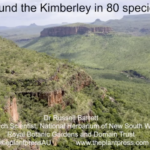Flora of the Kimberly, Dr Russell Barrett