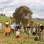 Group planting, photo from http://www.oatleyflorafauna.org.au/index.php/2020/09/30/off-re-greening-goes-bush/