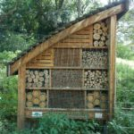 Insect hotel, image Jeff Howes