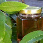 Lemon Myrtle Syrup with Lemon Myrtle leaves
