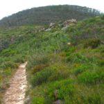 Path to summit, image Ian Cox, Lesley Waite