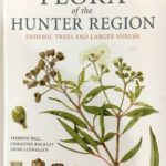 Book review – Flora of the Hunter Region, Stephen Bell, Christine Rockley and Anne Llewellyn
